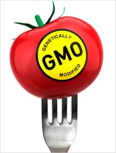 gmo-tomato-fork